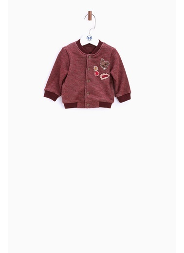 Sweatshirt-BG Baby